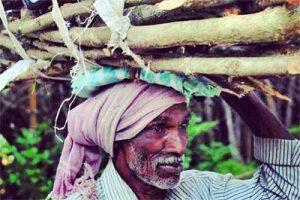 Соларни фенери за водачи на слонове в Индия
